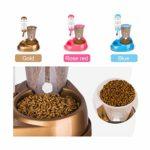 Distributeur Nourriture 2 en 1 Pet Cat Dog Feeder automatique avec une grande capacité de fontaine d'eau bols de nourriture et distributeur de bouteille d'eau for chien chat lapin Croquettes Distribut