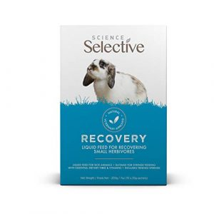 Supreme Science Recovery 10 x 20g