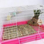 TEEPAO Tapis de Sol en Paille tissée pour Lapin, Hamster, Cochon d'Inde, Chinchillas et Autres Petits Animaux – 2 Tailles au Choix