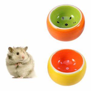 POPETPOP Petits Bols en céramique – Lot de 2 Bols pour Aliments et Eau pour Hamsters – Bol pour Cochon d'Inde, Gerbille, Rat, Chinchilla, Hamster syrien, gamelle pour hérisson