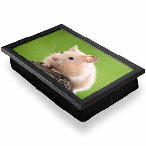 Pouf de bureau de luxe confortable, fonctionnel et portable – Bean Bag pour hamster animaux animaux rongeurs #8277