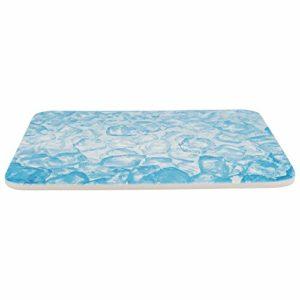 TRIXIE Plateau rafraîchissant pour Petits Animaux Bleu 28 x 20 cm