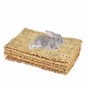 Bobotron Tapis en herbe pour lapins Sans danger et comestible