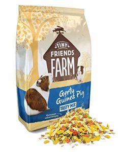 Supreme Petfoods Gerty Guinea Pig Tasty Mix Mélange pour Cochons d'Inde pour Petit Animal