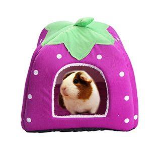 Abri et panier pour petit animal de compagnie – Lapin, cochon d'Inde, hamster, hérisson, chinchilla, etc.