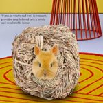 Felenny Maison d'herbe de Lapin Portable Jouet à Mâcher Durable Adopté de Haute Qualité Herbe Naturelle Lit de Tapis Écologique pour Hamster Cochon d'Inde Lapin