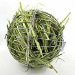 Gaetooely Boule de Foin Nourriture pour Le Plaisir du Cochon d'Inde du Hamster du Rat du Lapin
