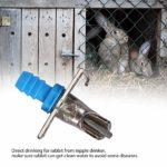 Kanryn Mangeoire à Lapin Double Springs, Abreuvoir Automatique pour Lapin pour Furet de Cochon d'Inde