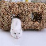 WeiCYN Accueil Herbe Cottage for la Guinée Pig Hamster Doux Pet Tissé Maison Paille Accessoires Lapin Main-tissé Petits Animaux