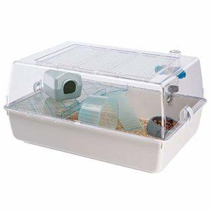 Ferplast Cage en Plastique pour Hamsters et Souris Mini Duna Hamster Cage sur 2 Étages pour Petits Animaux, Toit Transparent, Accessoires Inclus, en Métal Vernis Blanc et Plastique, 55 X 39 X H 27 cm