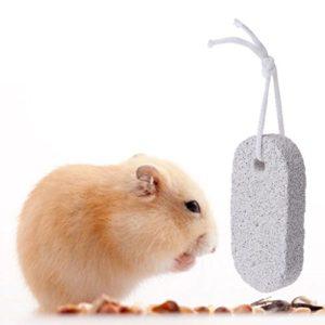 Mentin Animal Domestique de Dents Pierre minéraux Hamster Lapin Rat Jouet à mâcher