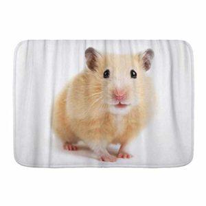 PatrickOgden Tapis de Salle de Bain, Gerbille Hamster Souris Mignon Animal Drôle Petit Rongeur Animal,Tapis de décoration Moelleux antidérapant,29.5″X 17.5″