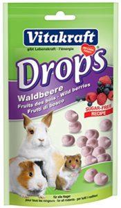 Vitakraft Lapin Wild Berry Chute (Bulk Deal de 9) 675G